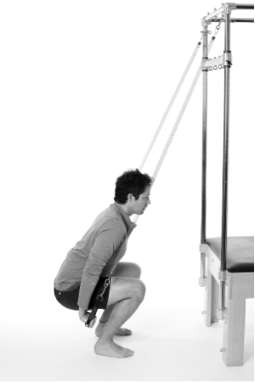 hip replacement assisted squat