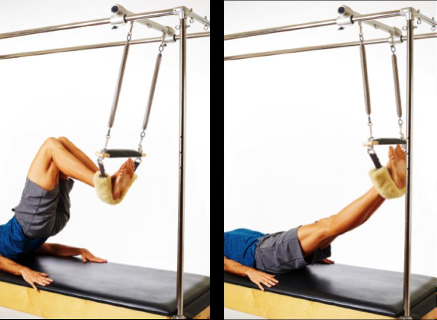 shoulder bridge exercise for patella injury