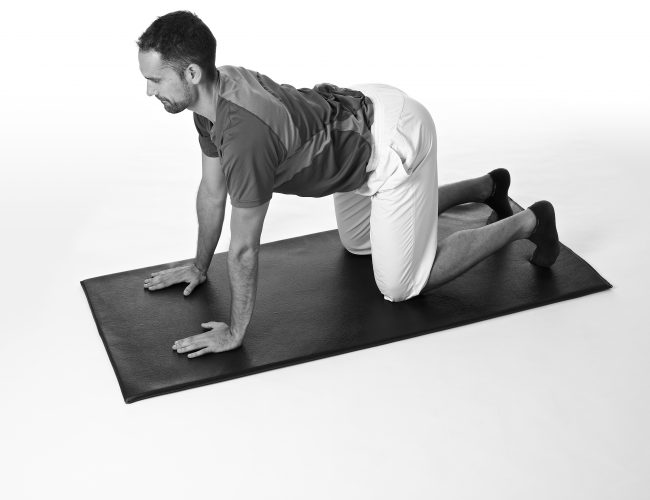 4 point kneeling with arms straight